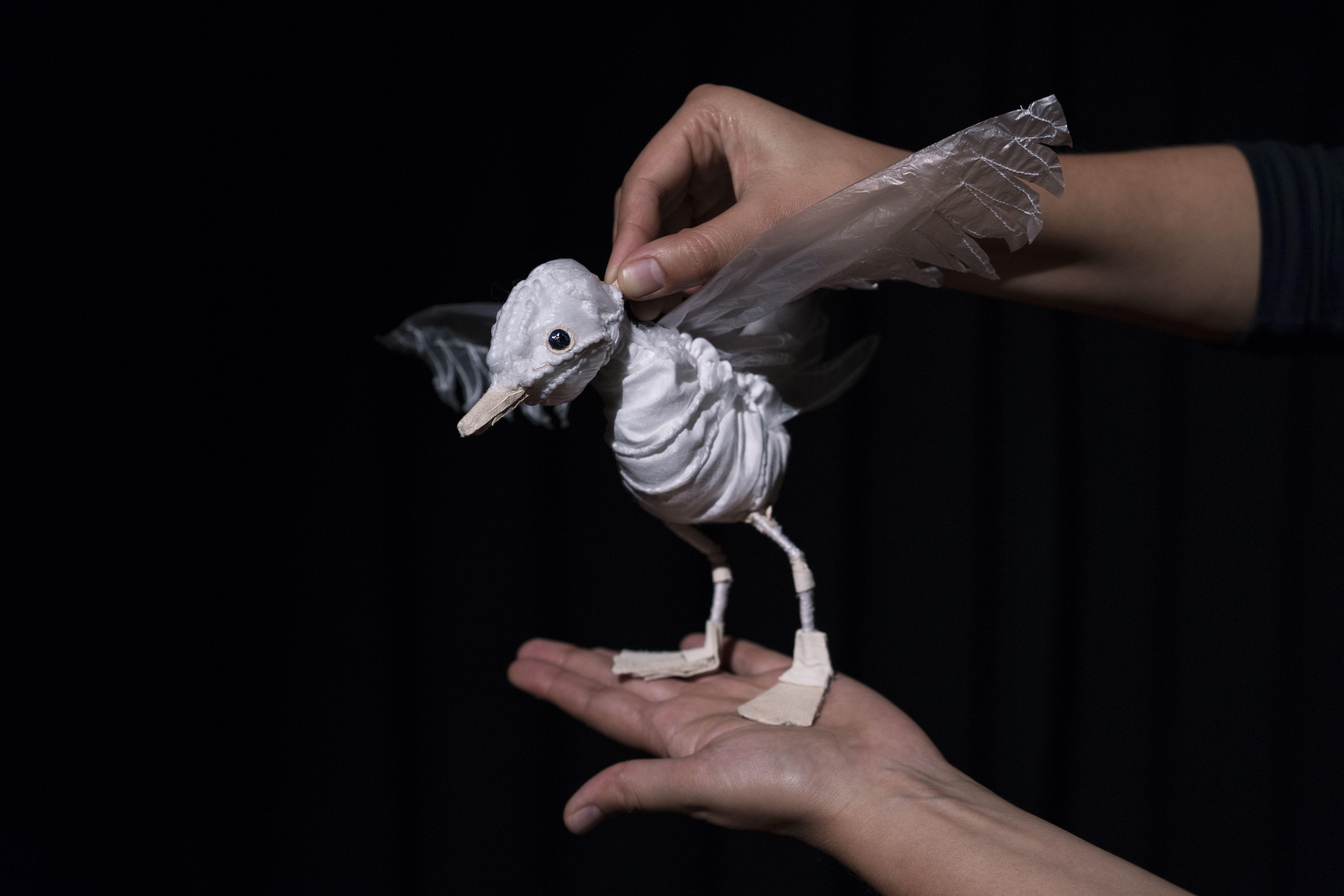 Die-Kater-Zorbas-der-kleinen-Möwe-das-Fliegen-beibrachte